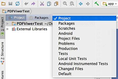 Visualização do projeto, no Android Studio IDE, em Project