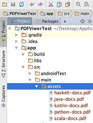 Colocando arquivos PDF no folder /assets