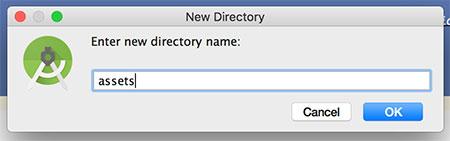 Criando o folder /assets