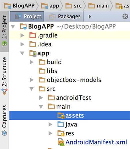 Diretório assets no projeto Android