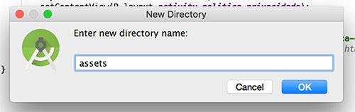 Criação de um novo diretório no projeto Android